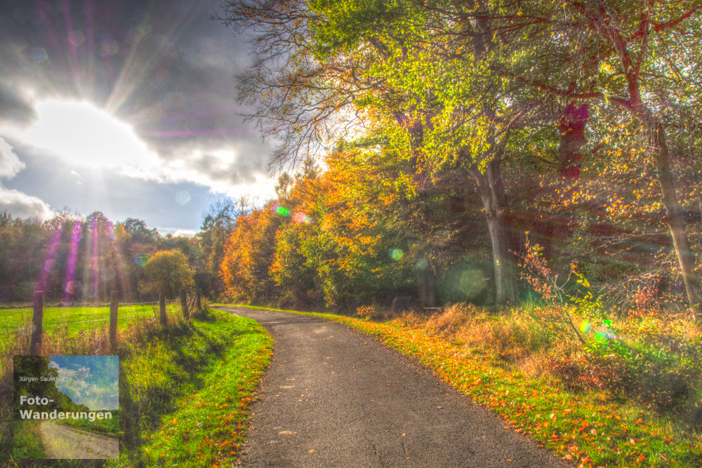 Herbstwald HDR